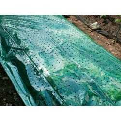 foglio protettivo per piante