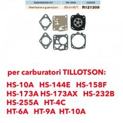 kit membrane e guarnizioni TILLOTSON DG-2-HS/T