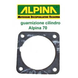 guarnizione cilindro Alpina 70
